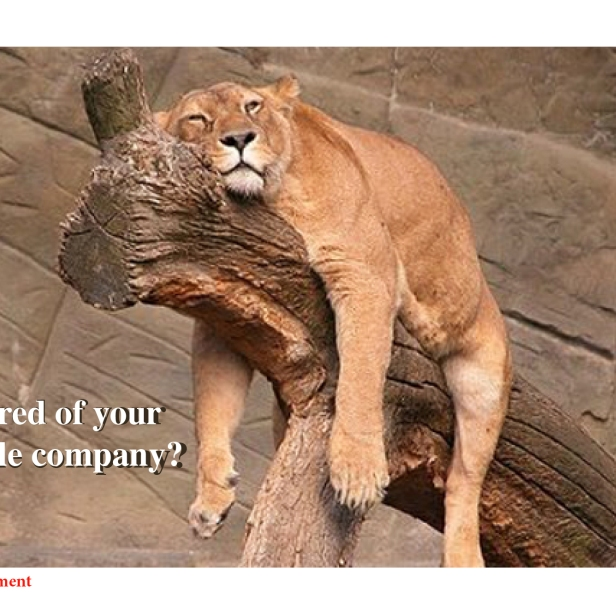 Tired of Your Title Company?
